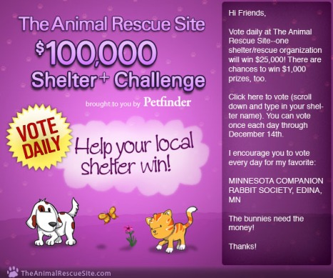 Animal Rescue Challenge page